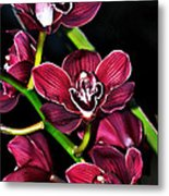 Cascading Red Orchids Metal Print