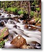 Cascading Rocky Mountain Forest Creek Metal Print