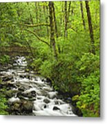 Cascading Stream In The Woods Metal Print by Andrew Soundarajan
