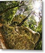 Castle Rock State Park Bolder Metal Print