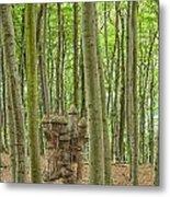 Castle Tree Stump Metal Print