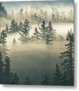 Castles In The Fog Metal Print