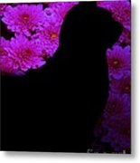 Cat And Flowers Midnight Silhouette Metal Print