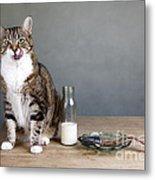 Cat And Herring Metal Print