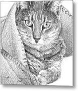 Cat In A Blanket Pencil Portrait  Metal Print