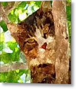 Cat In A Tree  Metal Print