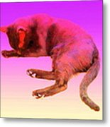 Even If Your Little Cat Is Resting In Space Or In Heaven She Still Loves You  Metal Print