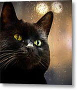 Cat In The Window Metal Print