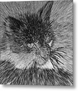 Cat - India Ink Effect Metal Print