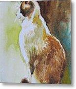 White And Brown Cat Metal Print