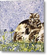 Cat Mint Wc On Paper Metal Print