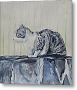 Cat On A Stone Wall Metal Print