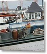 Cat On Boat Metal Print