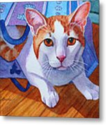 Cat Out Of The Bag Metal Print