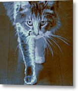 Cat Walking Metal Print