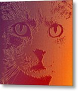 Cat With Intense Stare Abstract  Metal Print