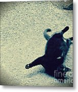 Cat Yoga Metal Print
