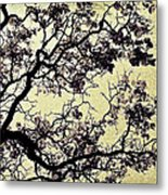 Catalpa Tree Gold Metal Print