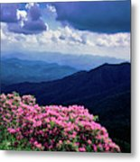 Catawba Rhododendron In Bloom, Yellow Metal Print