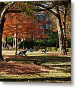 Catching Rays - Davidson College Metal Print