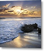 Catching The Light Metal Print