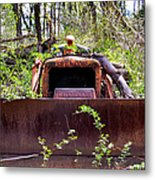 Caterpillar Rough Metal Print