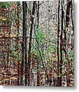 Cathedral In The Woods Metal Print