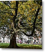 Cathedral Square - Exeter Metal Print