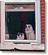 Cats On A Sill Metal Print by Randi Shenkman