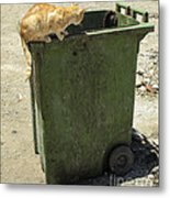 Cats On And In Garbage Container Metal Print