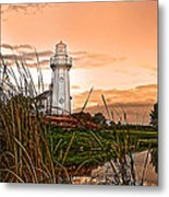 Cattails And Lighthouse In Indiana Metal Print