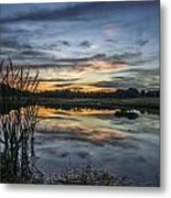 Cattails And Sunset Metal Print