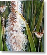 Cattails And Wrens Metal Print