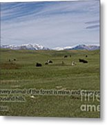 Cattle And Bible Verse Metal Print