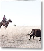 Cattle Drive Metal Print