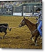 Caught Calf Metal Print