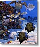 Cayman Reef Re0024 Metal Print