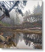 Cedar Creek Lagoon Metal Print