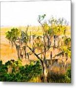 Cedar In The Marsh Metal Print