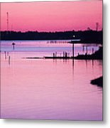 Cedar Island Pinks Metal Print