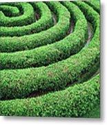 Cedar Maze Metal Print