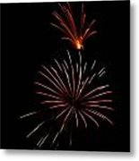 Celebration Xl Metal Print