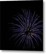 Celebration Xxix Metal Print
