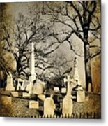 Cemetery Shades Metal Print