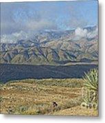 Central Arizona Landscape Metal Print
