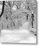 Central Park Dressed Up In White Metal Print