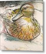 Central Park Duck On The Rocks Metal Print