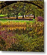 Central Park In Autumn - Nyc Metal Print