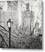 Central Park Lamppost In New York City Metal Print