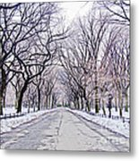 Central Park Mall In Winter Metal Print